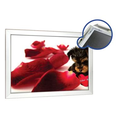 Shutter Frames 28mm